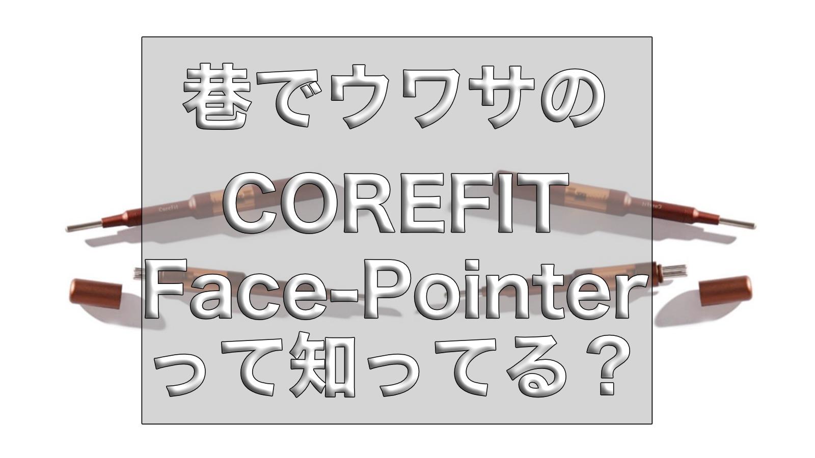 2分で小顔に!?美顔のためのFace-Pointer(フェイスポインター)の価格、口コミ、購入方法など