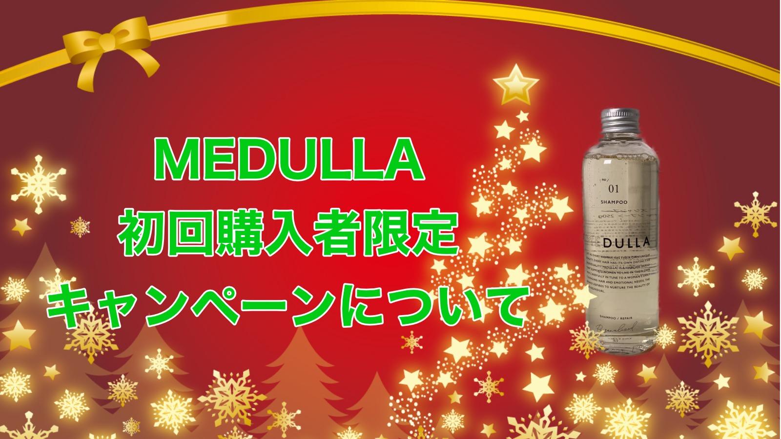 【キャンペーン開催中】オーダーメイドシャンプーMEDULLA(メデュラ)がおすすめな理由