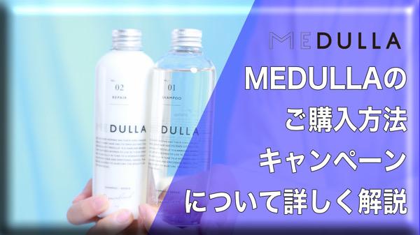 オーダーメイドシャンプーMEDULLA(メデュラ)の購入方法、キャンペーンについて/価格や口コミ、香り、Eni限定コードなど