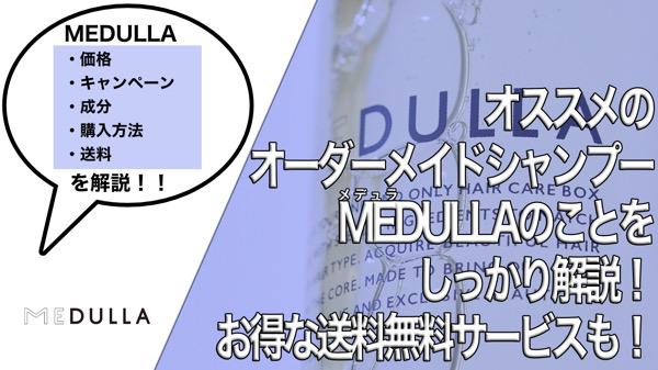 【オススメ】オーダーメイドシャンプーMEDULLA(メデュラ)/価格、口コミ、成分、購入方法、クーポン、キャンペーン、送料無料などを解説!